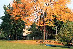 campus image