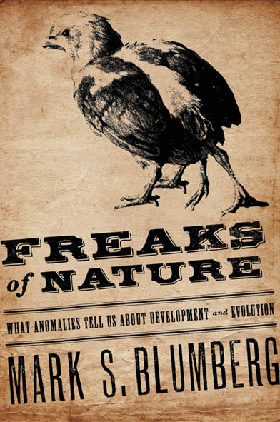 Book Cover - Title in bold, black lettering beneath a printed image of a four-legged chicken against a tan background.